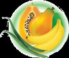 Meru Greens Horticulture EPZ Limited